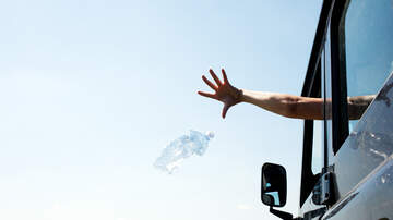 Sarah the Web Girl - Hamburg Man Arrested on Warrant After Throwing Litter Out of Car Window