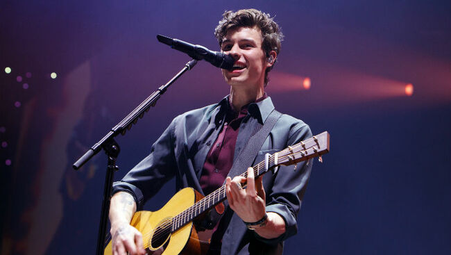 Shawn Mendes Was Denied From A Dublin Pub, So He Went To McDonald's Instead