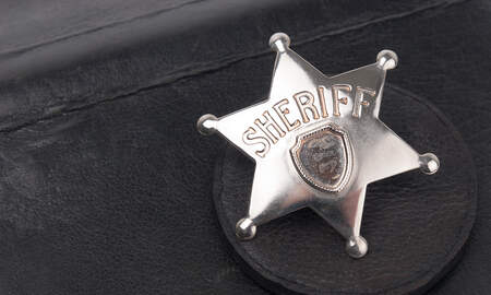 Local News Feed - Weekly Newton County Sheriff's Report
