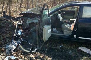 Spider Riding Shotgun Causes New York Woman to Crash Her Car