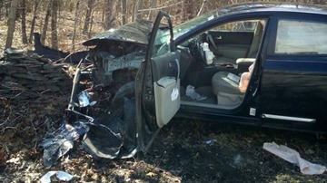 Weird, Odd and Bizarre News - Spider Riding Shotgun Causes New York Woman to Crash Her Car