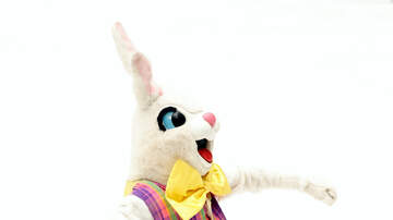 Mo' Bounce - PetSmart Offering Free Pictures With The Easter Bunny This Weekend