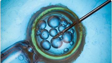 BC - Fertility Doctor Used His Own Sperm To Secretly Father 49 Kids