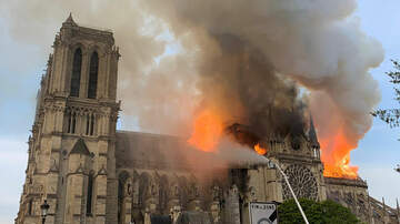 Jonny Hartwell - Celebs React To Notre Dame Cathedral Fire