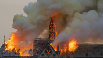 C-Rob Blog (58472) - Historic Notre Dame Cathedral Severely Damaged in Catastrophic Fire
