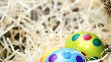The Bob and Christine Morning Show - This Easter Weekend, We'll Consume 91 Billion Of These...
