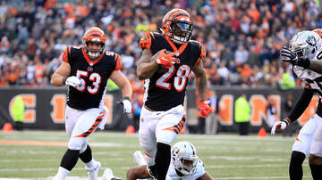 Lance McAlister - The Bengals 2019 schedule is out
