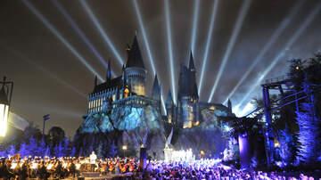 The Theme Park Podcast - The Theme Park Podcast: Harry Potter, HHN and Gondolas
