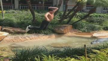 Weird News - Florida Teen Arrested for Performing 'RKO' Finishing Move on Mall Alligator