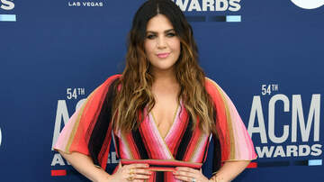 iHeartCountry - Hillary Scott's Twins Are 'Super Stoked' About Home Improvement Projects