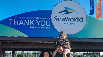 Mike Dellinger - Mid-Week Family Get Away to Sea World San Diego