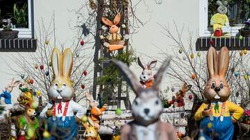 Rick Lovett - Easter Egg Hunts & Family Activities Around Town