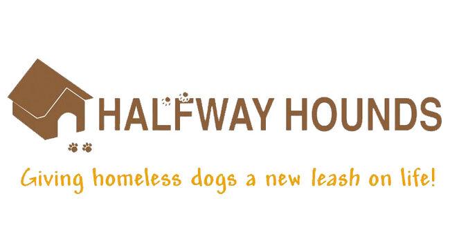 Halfway Hounds