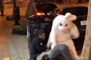 Easter Bunny Helps Break Up Fight