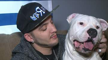 Trevor D in the Morning Show - Guy Tried to Sell His Car to Save His Dog's Life, Then Donations Poured In