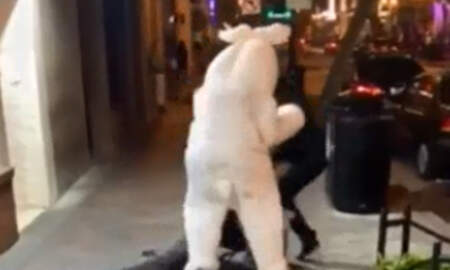 National News - Fighting Easter Bunny Has Lengthy Criminal History, Is Wanted In New Jersey