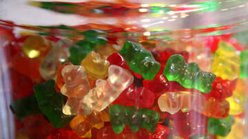 Trending in the Bay - Caffeine Infused Gummy Bears
