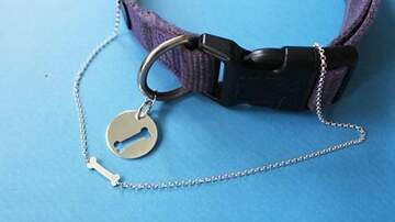 Mathew & Priscilla In The Morning - You Can Now Get A Matching BFF Necklace With Your Dog