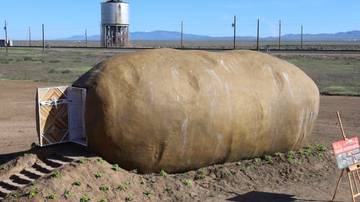 Buzzing - Stay Overnight In A Giant Potato For Only $200