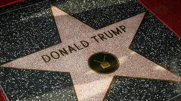 National News - Trump's Star on the Hollywood Walk Of Fame Vandalized... Again