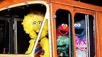 Wendy Wild - NYC Street Renamed 'Sesame Street' After The Iconic Children's Show