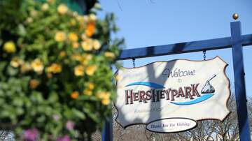 Hurley - What's New at Hersheypark for the 2019 Season?