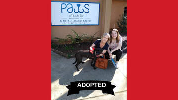 Wags with Wendy - Wags with Wendy - Malala ADOPTED!