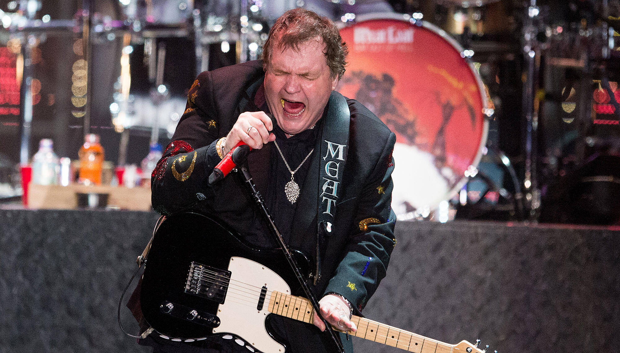Meat Loaf Falls Off Stage During Q&A, Breaks Collarbone