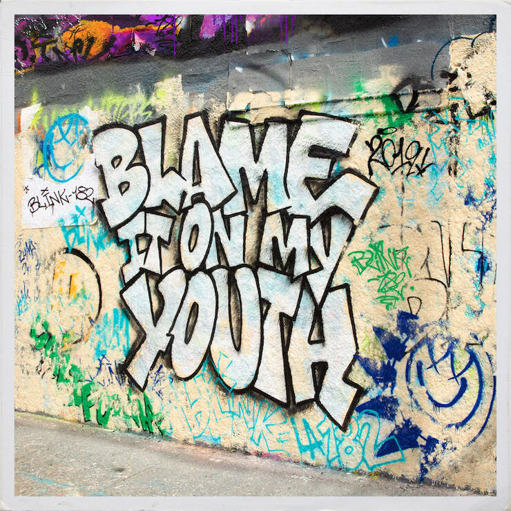 "blink-182 ""Blame It On My Youth"""
