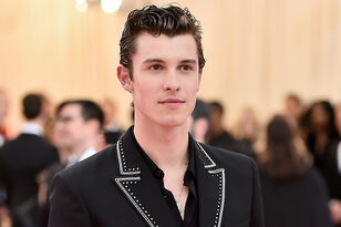 Shawn Mendes Drops His Pants For Calvin Klein (AGAIN), Breaks The Internet