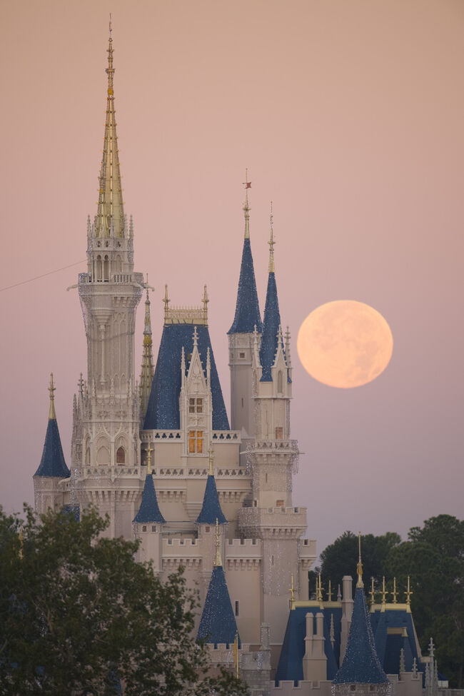 Full Moon Over Disney World