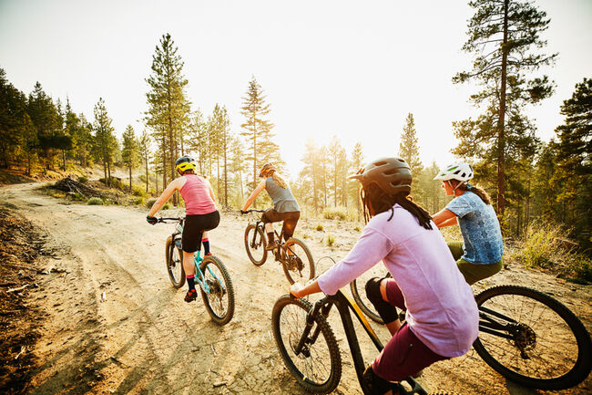 Female mountain bikers riding on forest road on summer evening