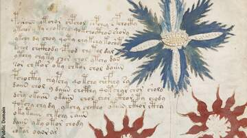 Coast to Coast AM with George Noory - British Academic Deciphers Voynich Manuscript?