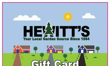 Jaime in the Morning! - Wednesday's Insanely Easy Answer for A $50 GC to Hewitts Garden Center
