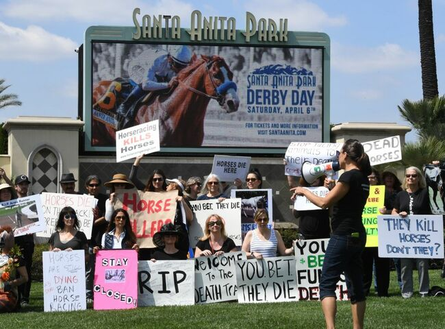 US-ANIMAL-HORSE-RACING-DEATHS