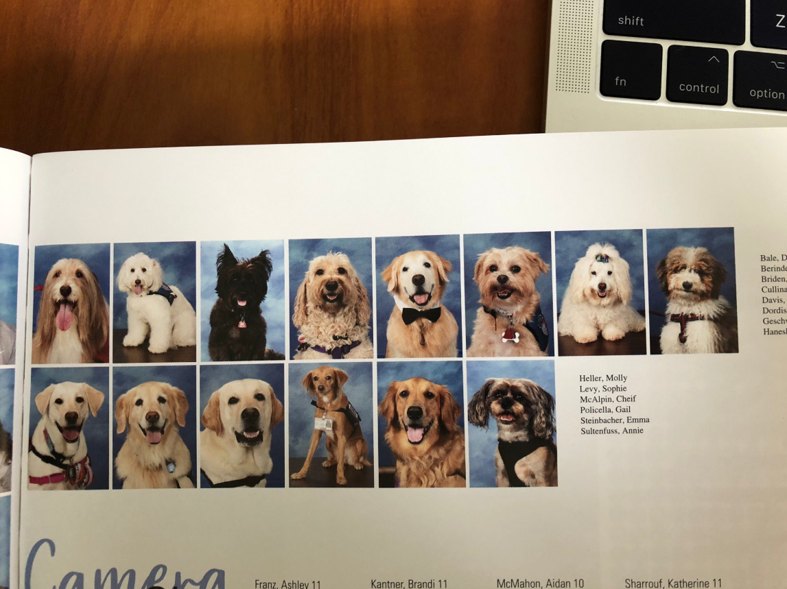 Parkland Students Devote Page in Yearbook for Therapy Dogs