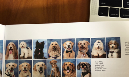 Uplifting - Parkland Students Devote Page in Yearbook for Therapy Dogs