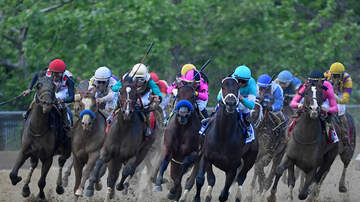 Sports Desk - War Of Will Wins Preakness Stakes