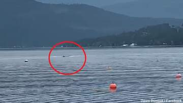 Coast to Coast AM with George Noory - Watch: Lake Monster Filmed in Canada?