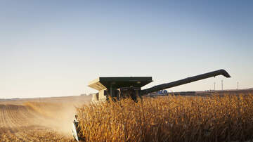 WHO Radio News - Iowa's corn harvest still not finished