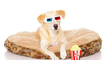 TJ, Janet & JRod - Check Out This Movie Theater That Lets You Bring Your Dog, And Has Wine