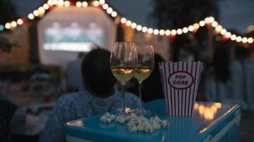 Julie's - Movie Theater Lets You Bring Your Dog & Has Bottomless Wine