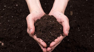 Marty and Jodi in the Morning - It's Official: You Can Now Be Compost After Death In Washington