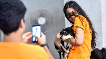 JROD - Here's How You Get Your Pet To Take The Perfect Instagram Photo