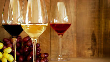 Jay Steele - Your Wine Preference Might Reveal Your Personality