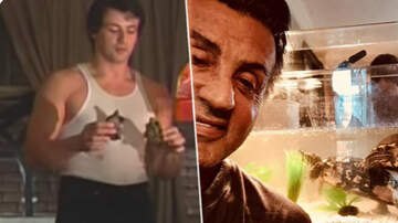 "Scotty Davis - Sylvester Stallone Still Has Cuff & Link"" The Turtles From ""Rocky"""