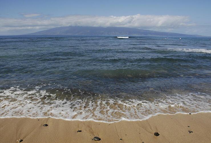California Man Killed in Hawaii Shark Attack   iHeartRadio