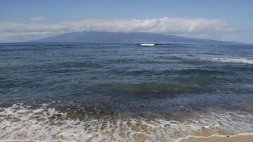National News - California Man Killed in Hawaii Shark Attack