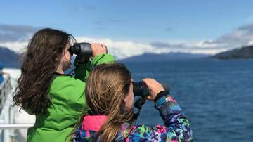 Casey B - CaseyB Takes His Family On The 26 Glacier Cruise