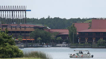Florida Front Row - Florida Woman Sues Disney Claiming Dive-Bombing Bird Gave Her Brain Injury